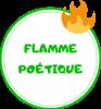 cat-flamme-1